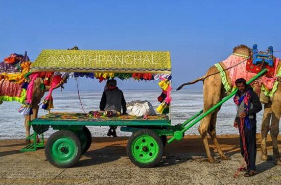 I visited Rann of Kutch Festival - Rann Utsav 2020
